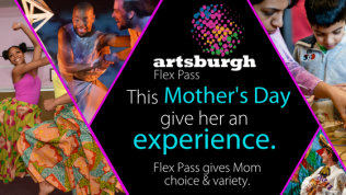 Artsburgh Flex Pass Graphics